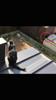 山口市 美容室 美容院 シューケット/猫カフェ/子連れ/宇部市/防府市/津和野町/萩市