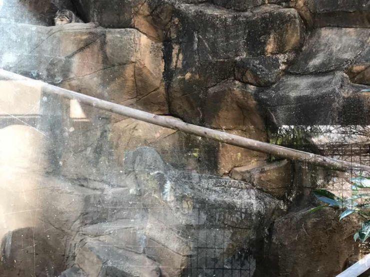 山口県山口市宮野美容室美容院ヘアサロンシューケット /子育て/スポット/おすすめ/未就園児/幼児